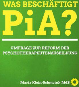Ergebnisse PiA-Studie B90_Grüne